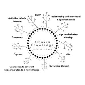 Chakra Categories by Universal Healings
